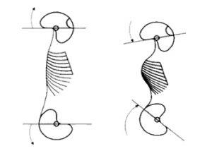 Spiraldynamik 1