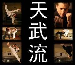 Kampfkunst Kampfsport Tenburyu