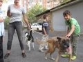 Kinder treffen auf unsere geretteten Straßenhunde