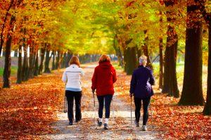 Nordic Walking - Deposit - Lizenznummer 127882908